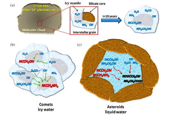 Voies moléculaires de formation d'acides aminés à partir du milieu interstellaire jusqu'aux astéroïdes et aux noyaux des comètes, Grégoire Danger