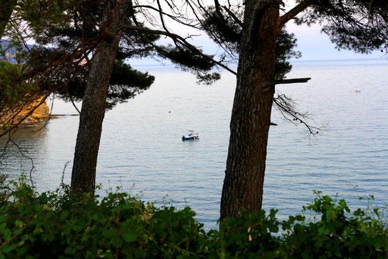 Un bateau sur une mer calme ; la vue entre deux pins suggère la détente, l'envie de se poser là