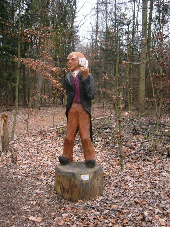 im Garather Wald