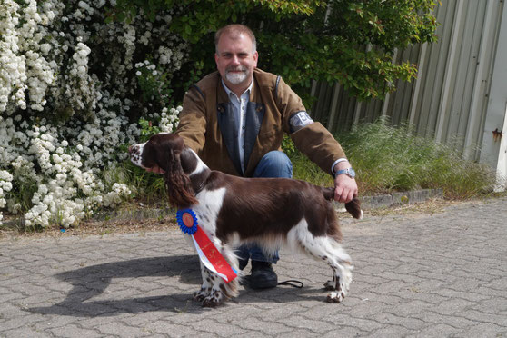 Ilse wins CAC-VDH at the International Show (CACIB) in Neumünster, Photo: Ulf F. Baumann