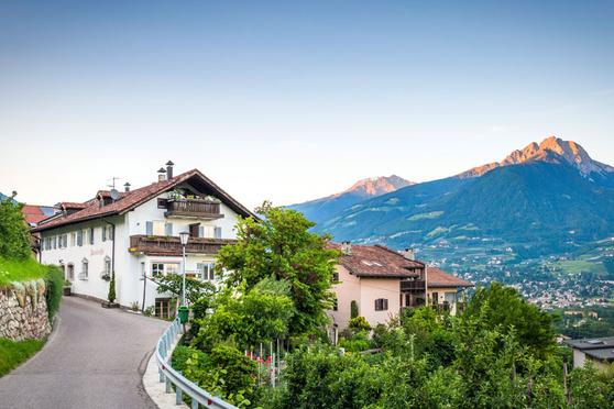 Pardellerhof Montin - Südtiroler Wein - Vini altoatesini - Marling - Marlengo - Weingut - Gourmet Südtirol