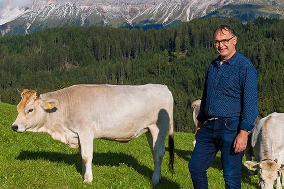 Dorfmetzgerei-Holzner-Lana-Speck-Macelleria-Gourmet-Südtirol