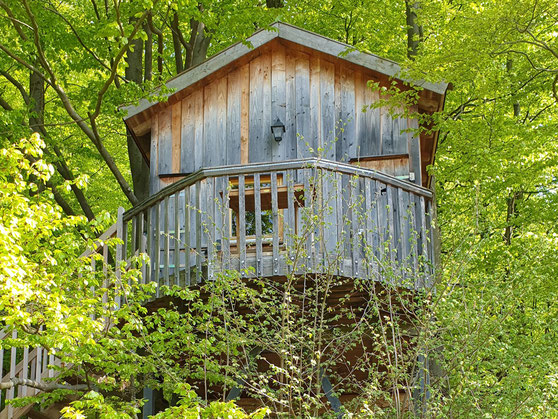 Baumhaus Sternengucker, Bild: Baumhaushotel Solling.