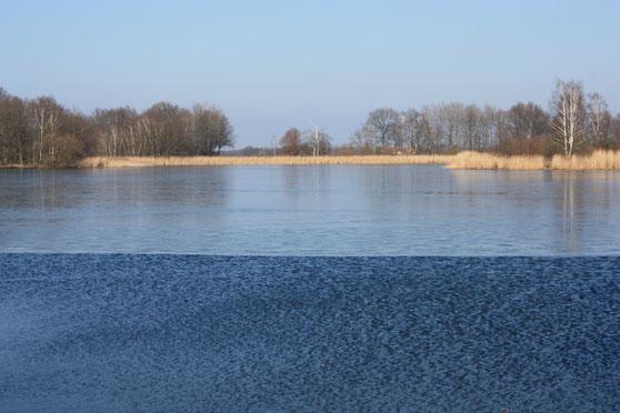 Dippelsdorfer Teich