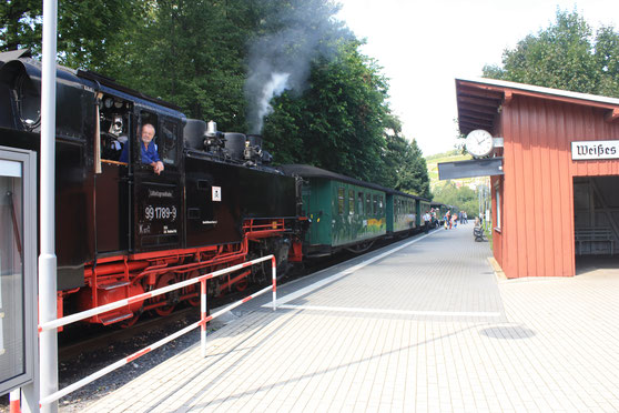 Lößnitzgrundbahn am Hpt Weißes Roß