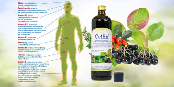 Cellin Energy Life Aronia-Beere Vitalstoff-Complex Yogaschule Voglreiter