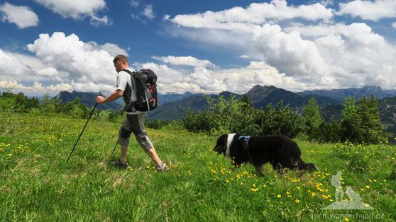 Wandern mit Hund auf die Hörndlwand