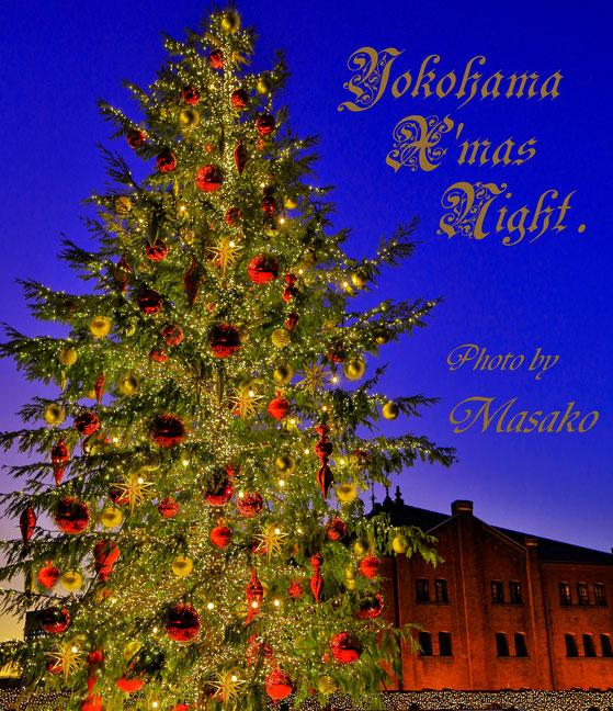 🎄12/22港北カルチャーフォトレッスンにて、ブルーモーメントの青い空にツリーが映えて・・・皆さんと、クリスマスカードに出来る写真の撮影を頑張りました❣