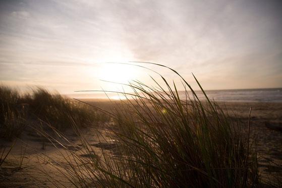Nochmal der Strand....