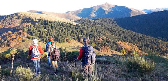 Marche douce en pleine nature en montagne rando bien-être ariége pyrénées
