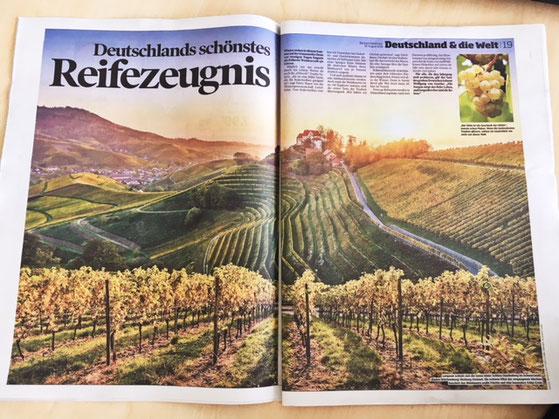 In der vergangenen Bild am Sonntag: Durbach und seine Weinberge, die für mich eine schicksalhafte und lebensverändernde Begegnung waren :-)