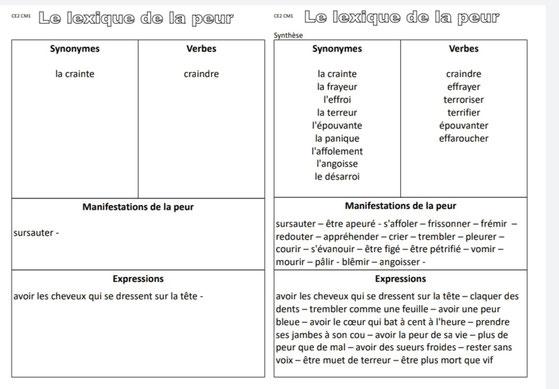 Vocabulaire peur production écrite rédaction Picot Grammaire Méthode Picot Correction CE2 CM1 cycle 2 cycle 3