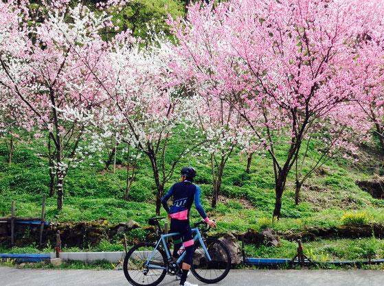 maap,ritte,parlee,giant,poc,福井,自転車,ロード,マープ,リッタ,パーリー,ポック,ジャイアント