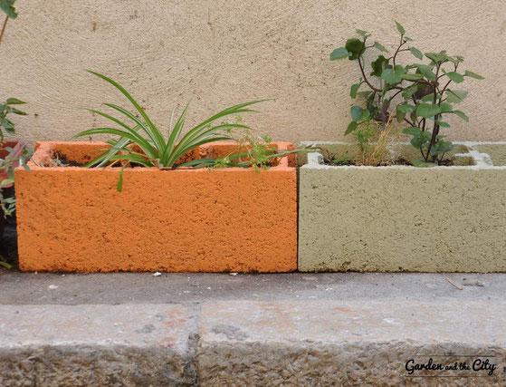 Parpaing coloré sur trottoir avec chlorophytum à Marseille