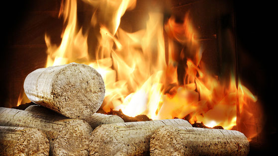 Pfalz-Briketts ohne Loch im Feuer