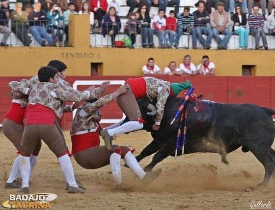 Tiago Dan Silva Santos em Jerez de los caballeros num toiro de Arucci