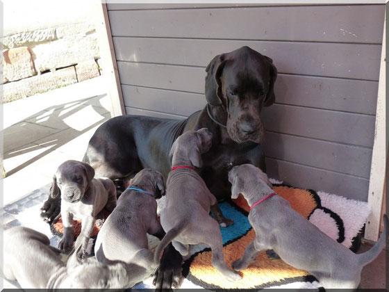 Nanny Jette betreut die Babys