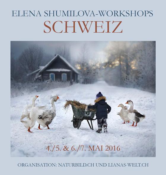 Elena Shumilova Workshop Schweiz