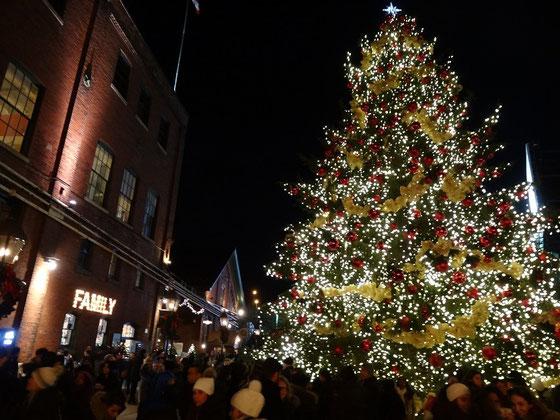 Hell erleuchteter Weihnachtsbaum in Torontos Distillery District.