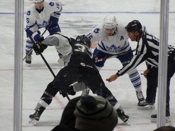 Mein erstes Hockey-Spiel 2015 in der AHL (zweite Liga) zwischen den Teams aus Toronto und San Antonio.