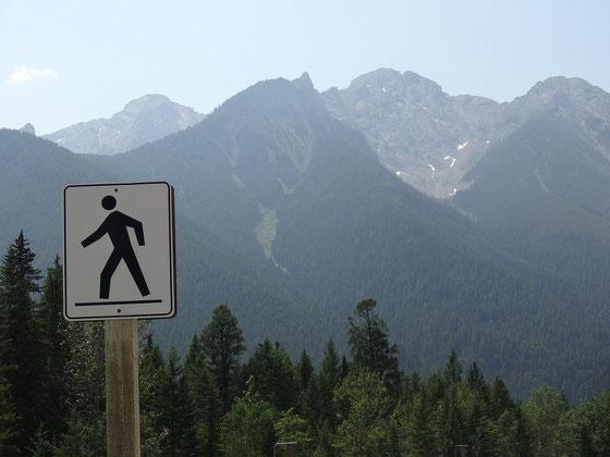 Wandern im Kootenay Nationalpark: Da hat man was vor...