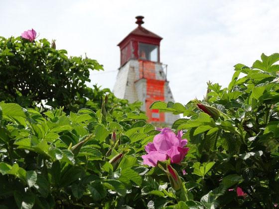 Leuchtturm auf Nova Scotia: In Cape Breton und überall auf der Insel gibt es sie wie Sand am Meer.