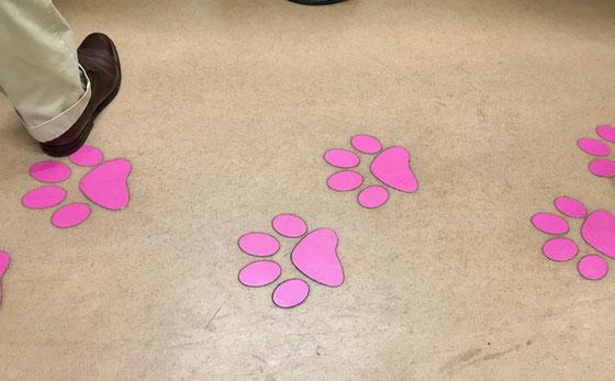 ☆通路にはピンクの大きな猫の足跡。