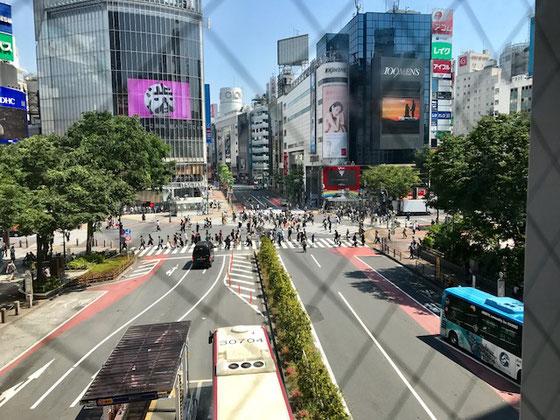 ☆連絡通路の上からスクランブル交差点を撮影。午前10:00前のため夕方の混雑ほどではありません。外国からの観光客に人気のスポットだそうです。