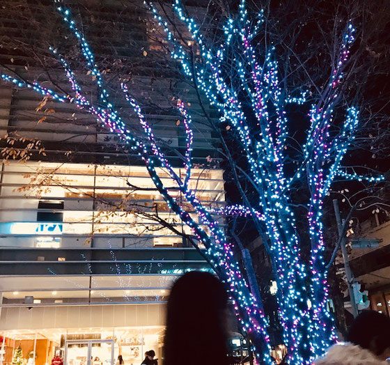 ☆小田急線成城学園前駅北口のイルミネーション。