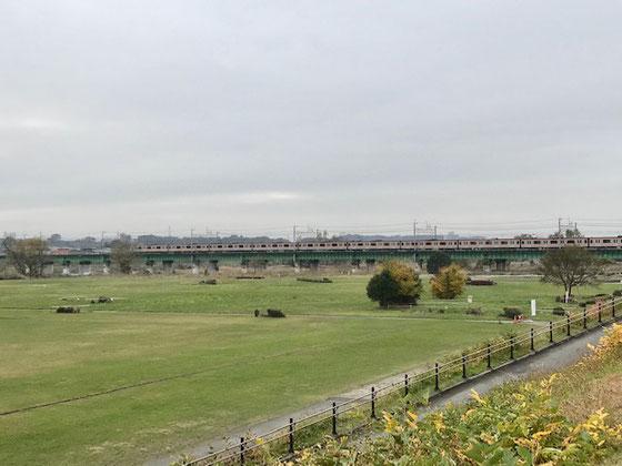 ☆アポより少し早く着いたので立川市福祉会館裏手の多摩川河川敷に。前方はJR中央線の鉄橋に電車が見えました。