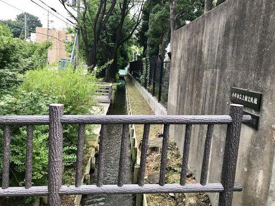 ☆公民館の前を「小川用水」のきれいな水が流れています。1656年開削。左側に青梅街道。