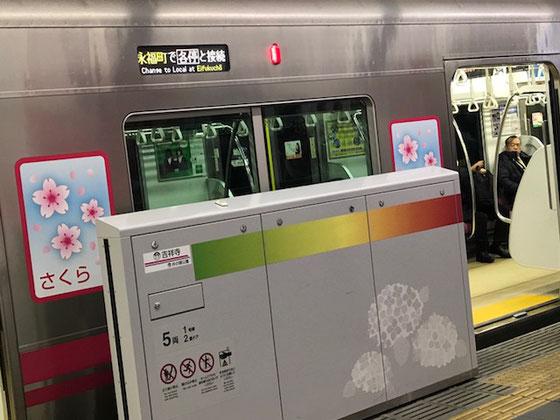 ☆成城学園前駅から下北沢経由。ただいま21:48京王井の頭線吉祥寺駅に到着。ボディーに「さくら」。電車はもう春もまじか。