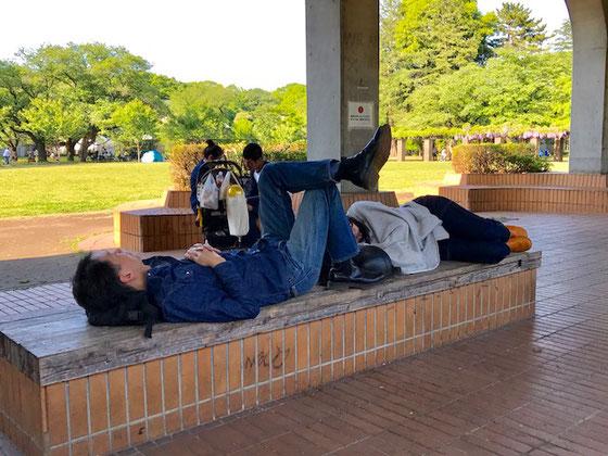 ☆アベックさんが仲良く昼寝中。