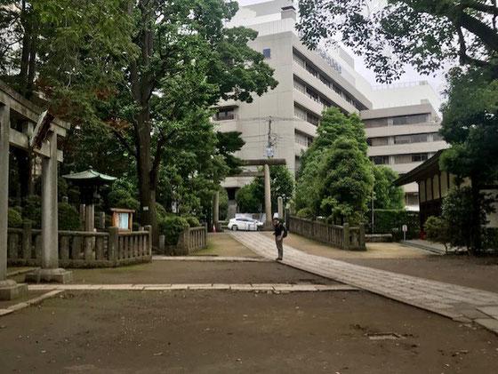 ☆千代田線の根津で降りて不忍通りから根津神社の境内を通り抜けると正面に日本医科大学付属病院。