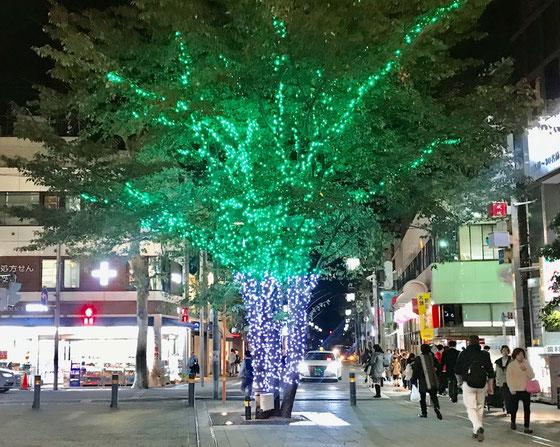 ☆小田急線成城学園前駅北口のイルミネーション。ただいま17:43。会議は18:00から。もう暗い。