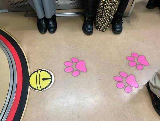 ☆往路世田谷線に久しぶりに猫電車に乗り合わせました。