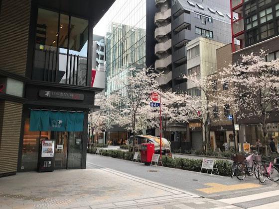 ☆日本橋三越前駅そばコレド室町1と2の間から見た江戸桜通りの桜。写真左奥には福徳神社。