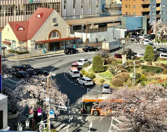 ☆NHKさんのSEKIYAビル6階の教室から眺めた国立駅。赤い三角屋根の旧駅舎のオープンもまじか(4月4日)。3月21日桜の花が咲いています。