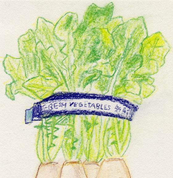 Fresh Vegetables 新鮮野菜 2018 ©︎ Hanae Tanazawa 本当は大根(小ぶりの4本)まで描いたのだけどうまくいかず、葉っぱ部分だけでクロップ(トリミング)したら画になった。今後はこんな手ももっと使ってしまうかもしれない。