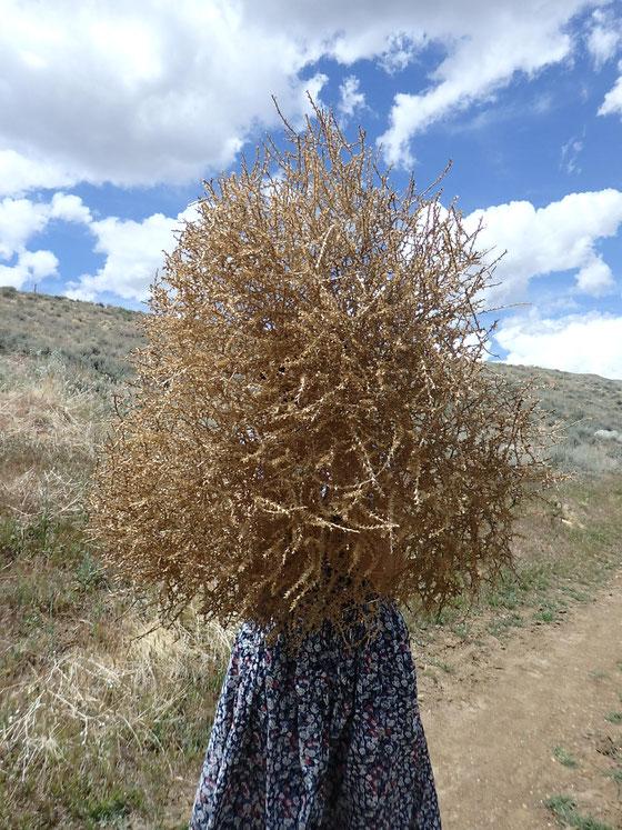 ルネ・マグリット風を狙う Trying a René  Magritte