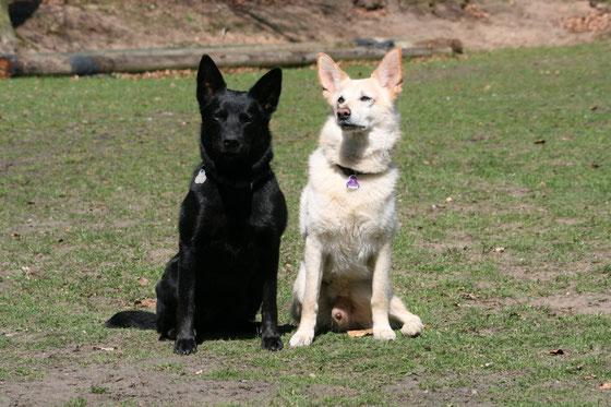 Ayra 1,5 Jahre und Berry 9 Jahre alt