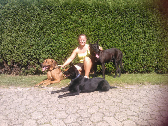 Da Ayra im Vordegrund liegt, wirkt sie garnicht so klein, dabei sind Evas Hunde das doppelte von Ayra.