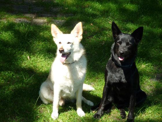 Berry und Ayra