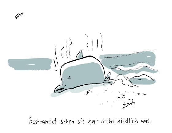 Cartoon von zum Thema Delfine