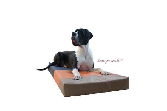 orthopädisches Hundekissen aus 100% Viskoschaum speziell für sehr große und schwere Rassen ab einem Körpergewicht von 50kg