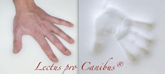 Visko Hundebetten von Lectus pro canibus® helfen ihrem Hund bei: Entspannen der Muskulatur · Linderung der Schmerzen · Entlastung des Drucks · Förderung der Durchblutung · Lösen von Verspannungen
