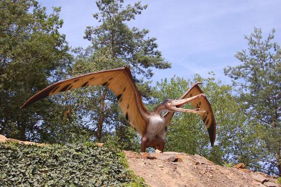 """Cearadactylus model"" von Angela Marie from NRW - Germany - cearadactylus ""Flugsaurier""Uploaded by FunkMonk. Lizenziert unter CC BY 2.0 über Wikimedia Commons - https://commons.wikimedia.org/wiki/File:Cearadactylus_model.jpg#/media/File:Cearadactylus_mode"