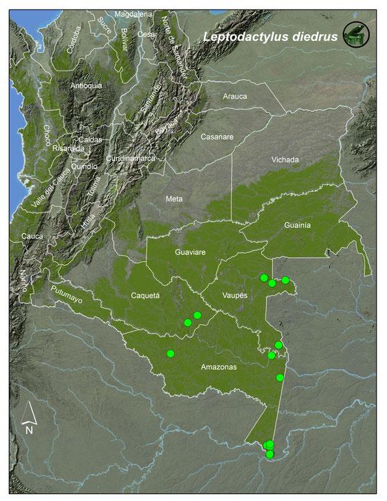 Leptodactylus diedrus;Lista y Mapas Anfibios de Colombia