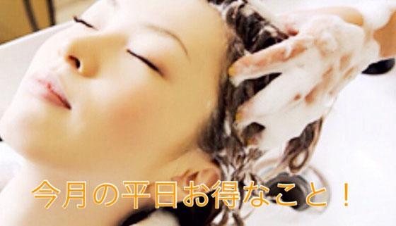 今月の平日お得なこと、長泉町、美容院、美容室、人気、ランキング、発毛、育毛、平日半額、カラー、頭皮エステ