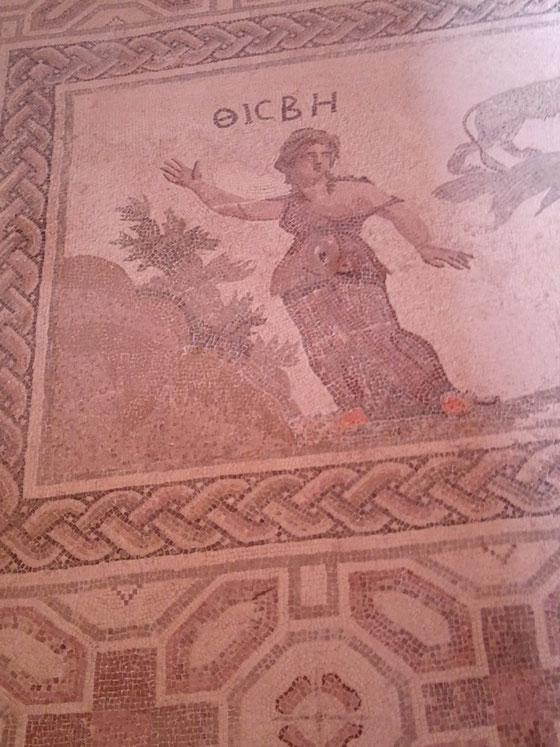 Paphos excavations ('Tisbe')